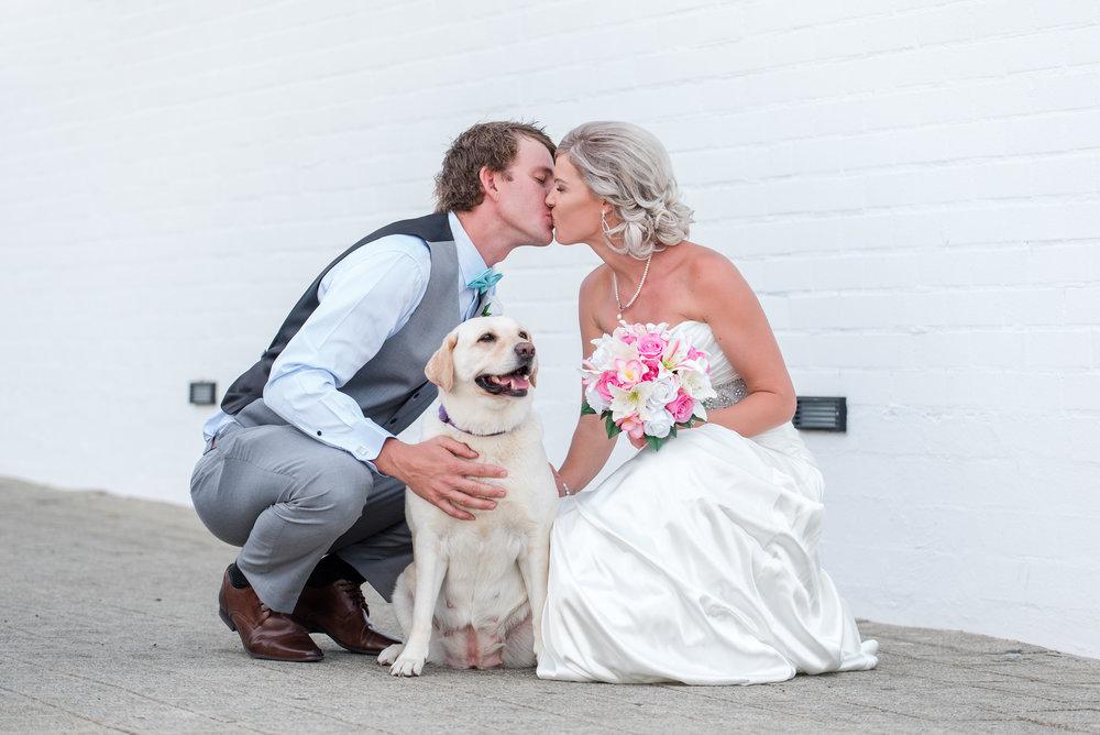 Bride, Groom & Furbaby Fremantle