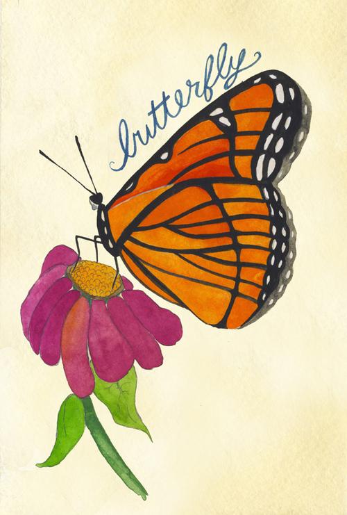 butterfly_b.jpg