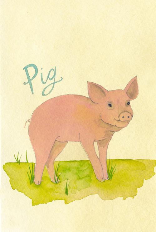 pig_b.jpg