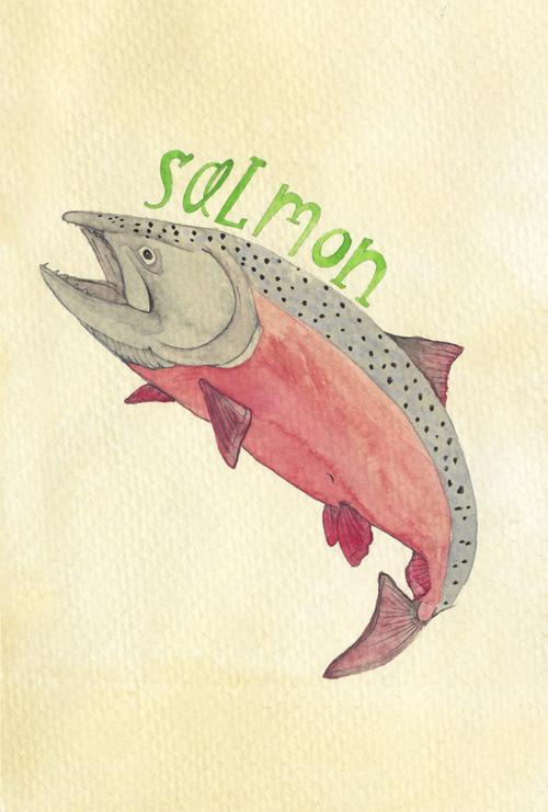 salmon_b.jpg