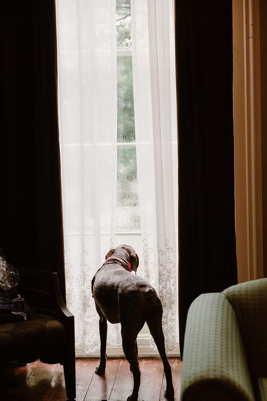 SarahMattozziPhotography-EmilyColin-LindenRowInnWedding-GettingReady-177.jpg