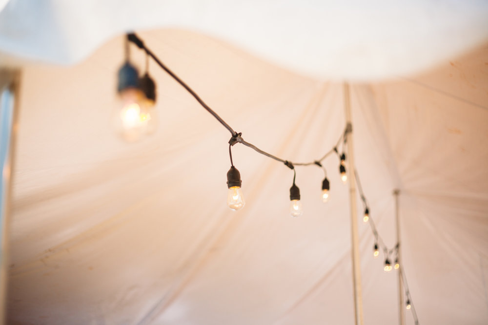 SarahMattozziPhotography-BackyardWedding-ColonialBeachVirginia-36.jpg