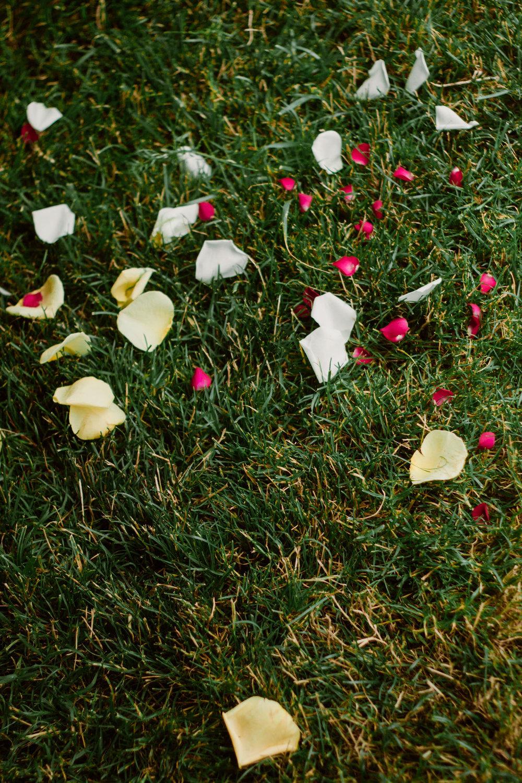SarahMattozziPhotography-IndianWedding-LynchburgVA-6.jpg