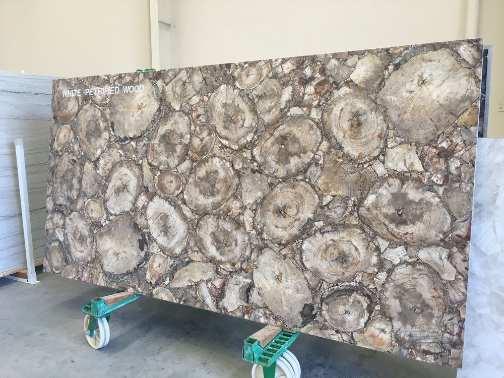 Stunning White Petrified Wood Slab at the Zuccari warehouse