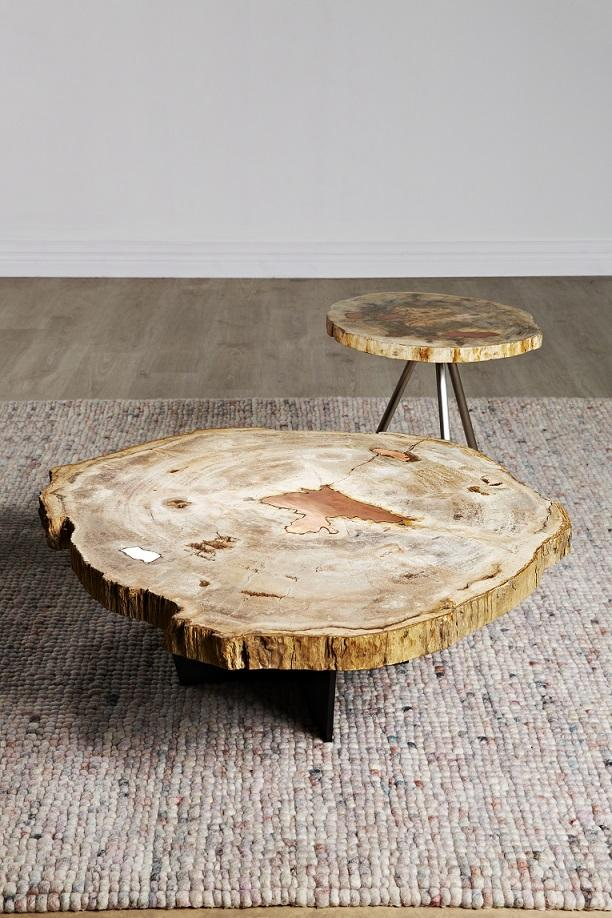 Globe West's beautiful Petrified Wood coffee and side tables