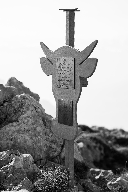 Ochsen Gipfel