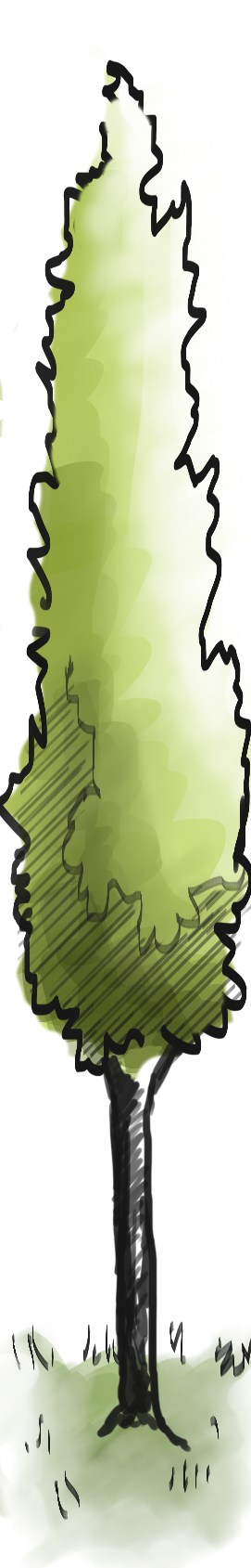 QUICKTREE.png
