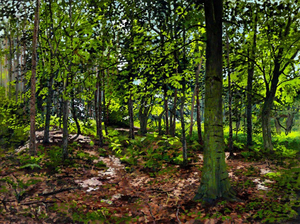 Tim Galton, The Woods at Smokers Hole