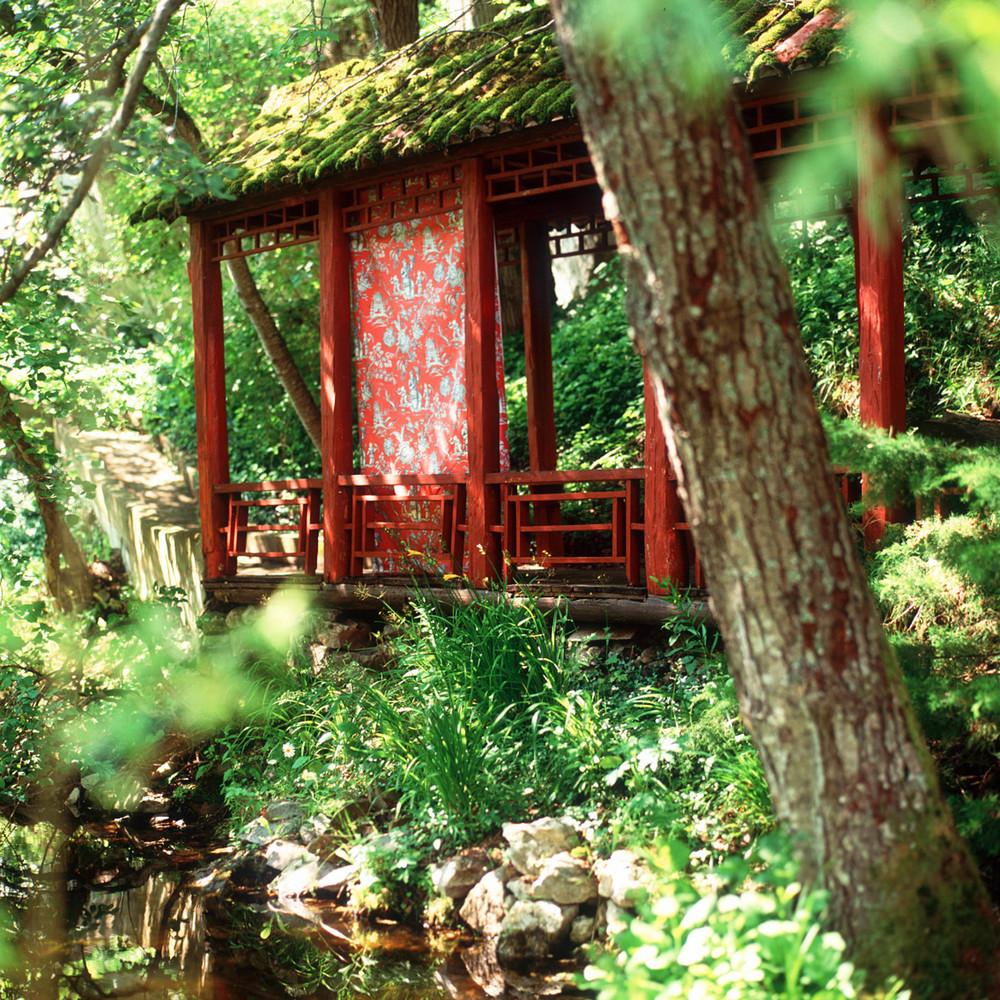 Hus i träd.jpg