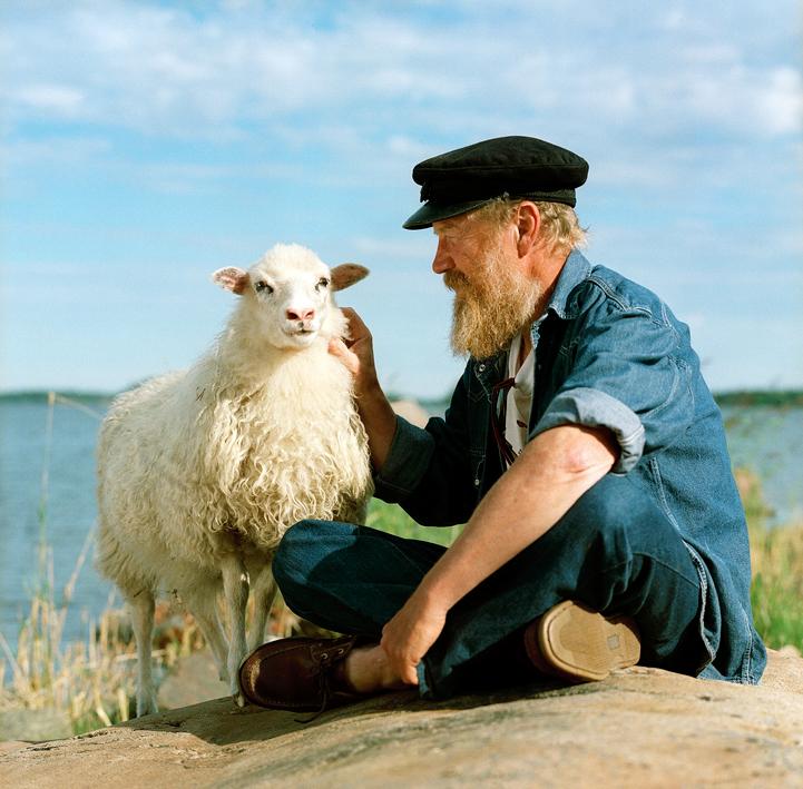 mannen och fåret.jpg