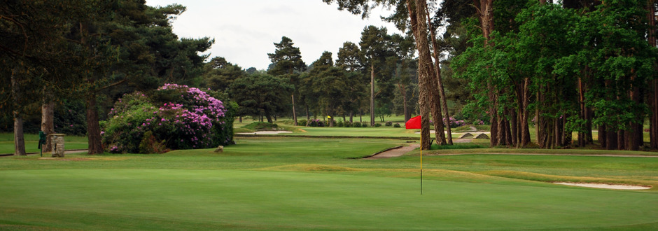 Ferndown-Golf Course
