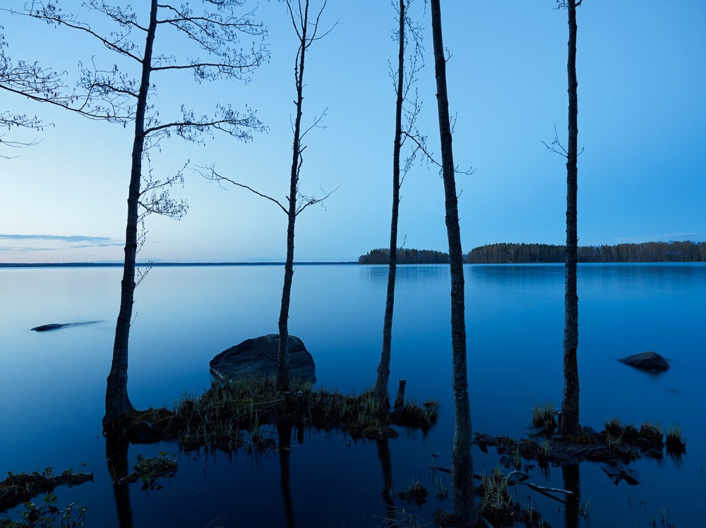 Sääksjärvi, 2014