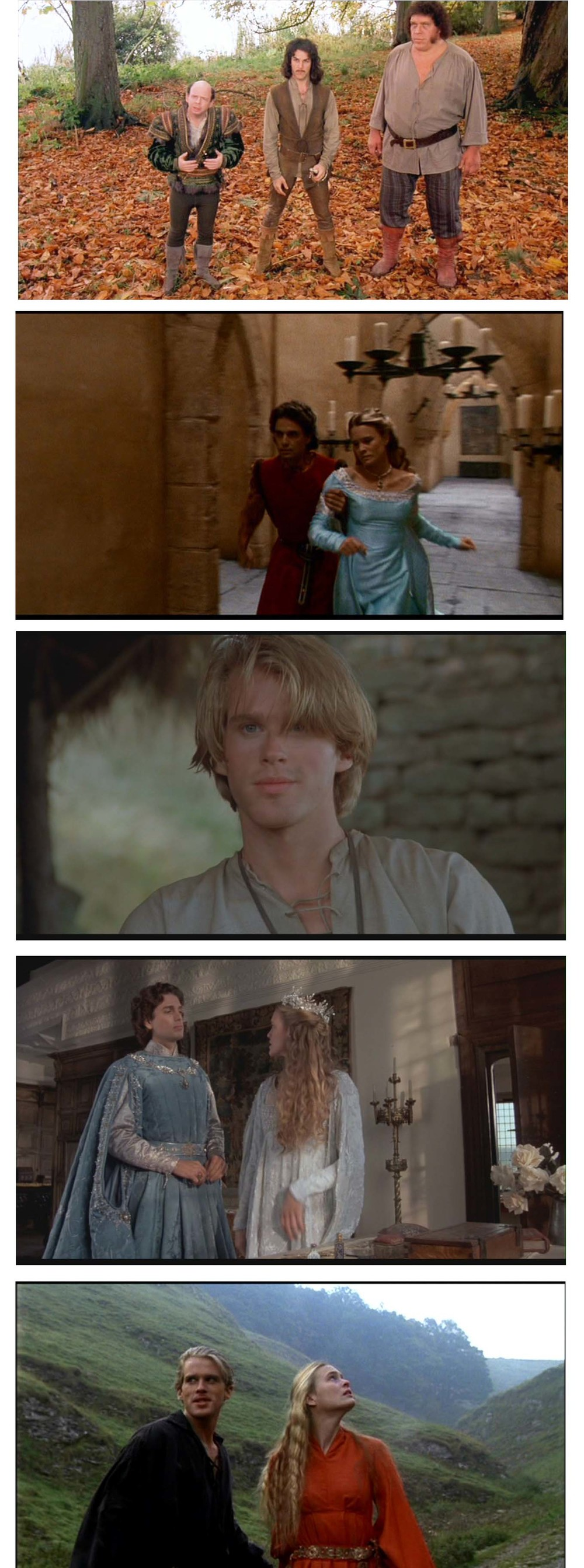 Living In - The Princess Bride.jpg