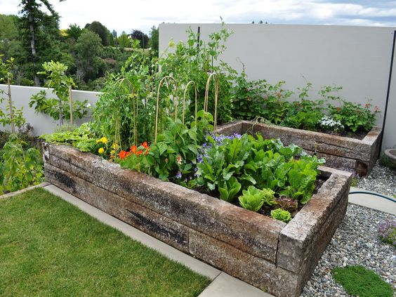 Raised beds  here .