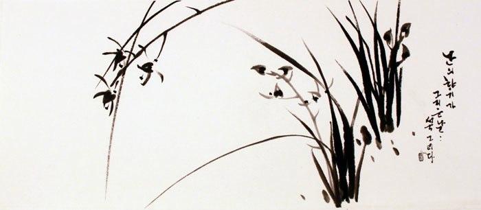 sungsook orchid(s).jpg