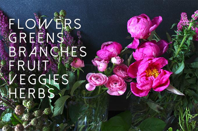 leigh clair | fleur guide