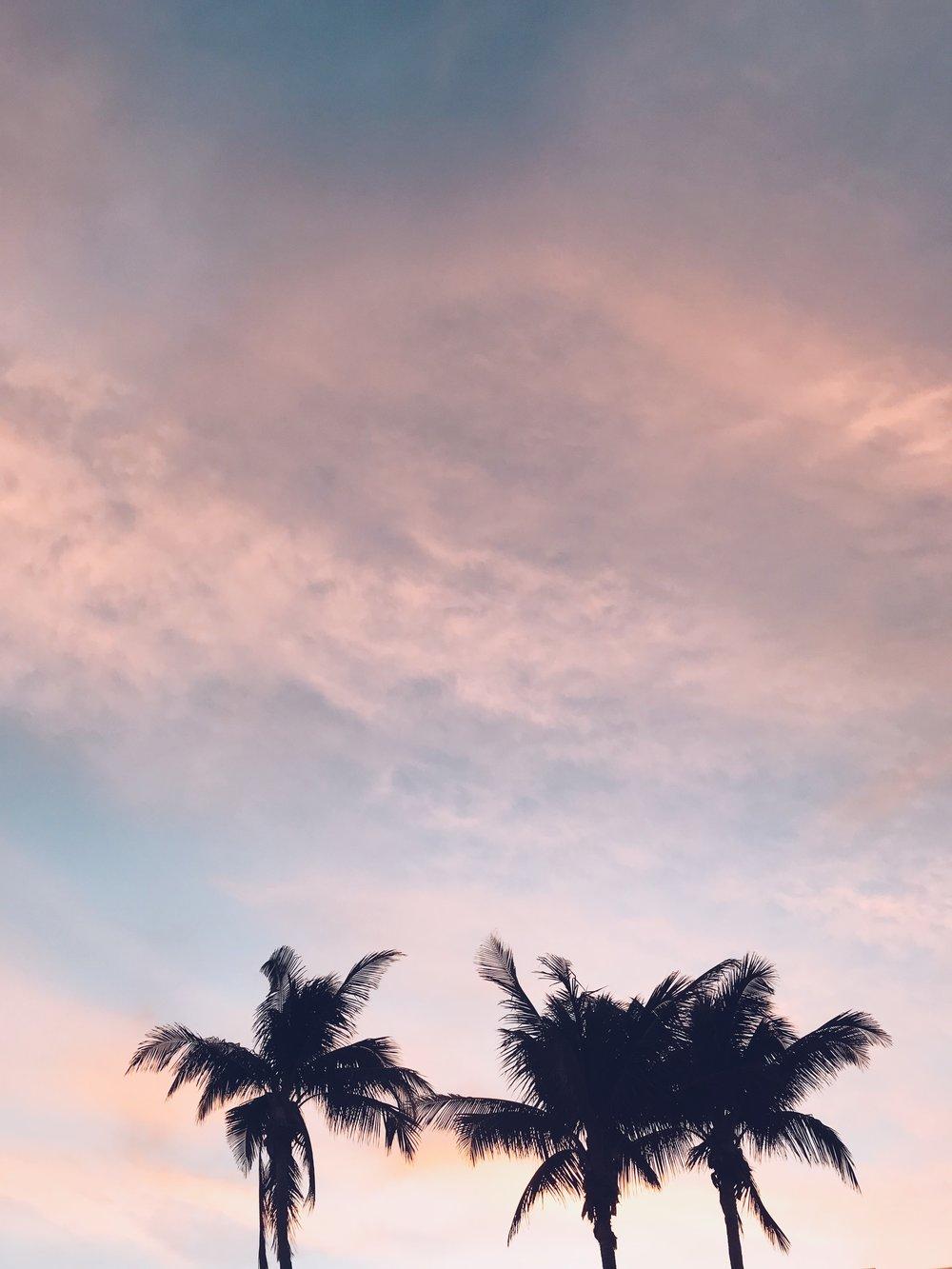 Sunny Florida | KiraSemple.com
