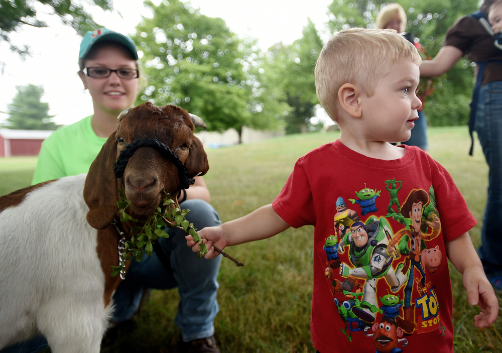 Maxon Angstadt, 2, of Hamburg feeds a goat held by Brooke Manwiller, 16, of Reading during a program put on by Berks 4H at Fleetwood Encore in Fleetwood, PA, on July 13, 2016. (Reading Eagle: Sarah Stier)