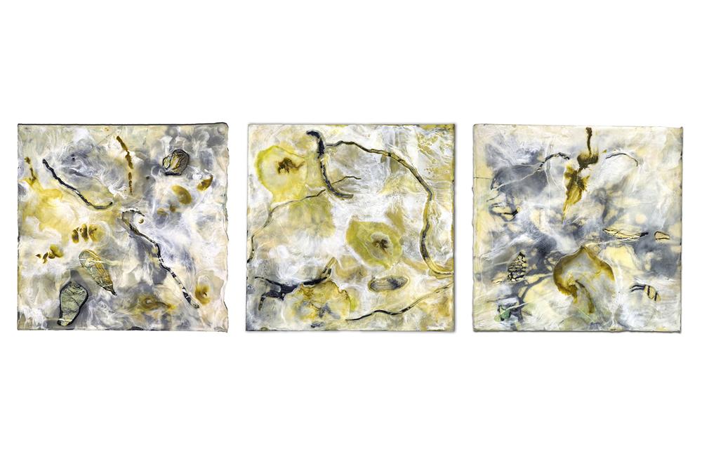 Cascadia (triptych)