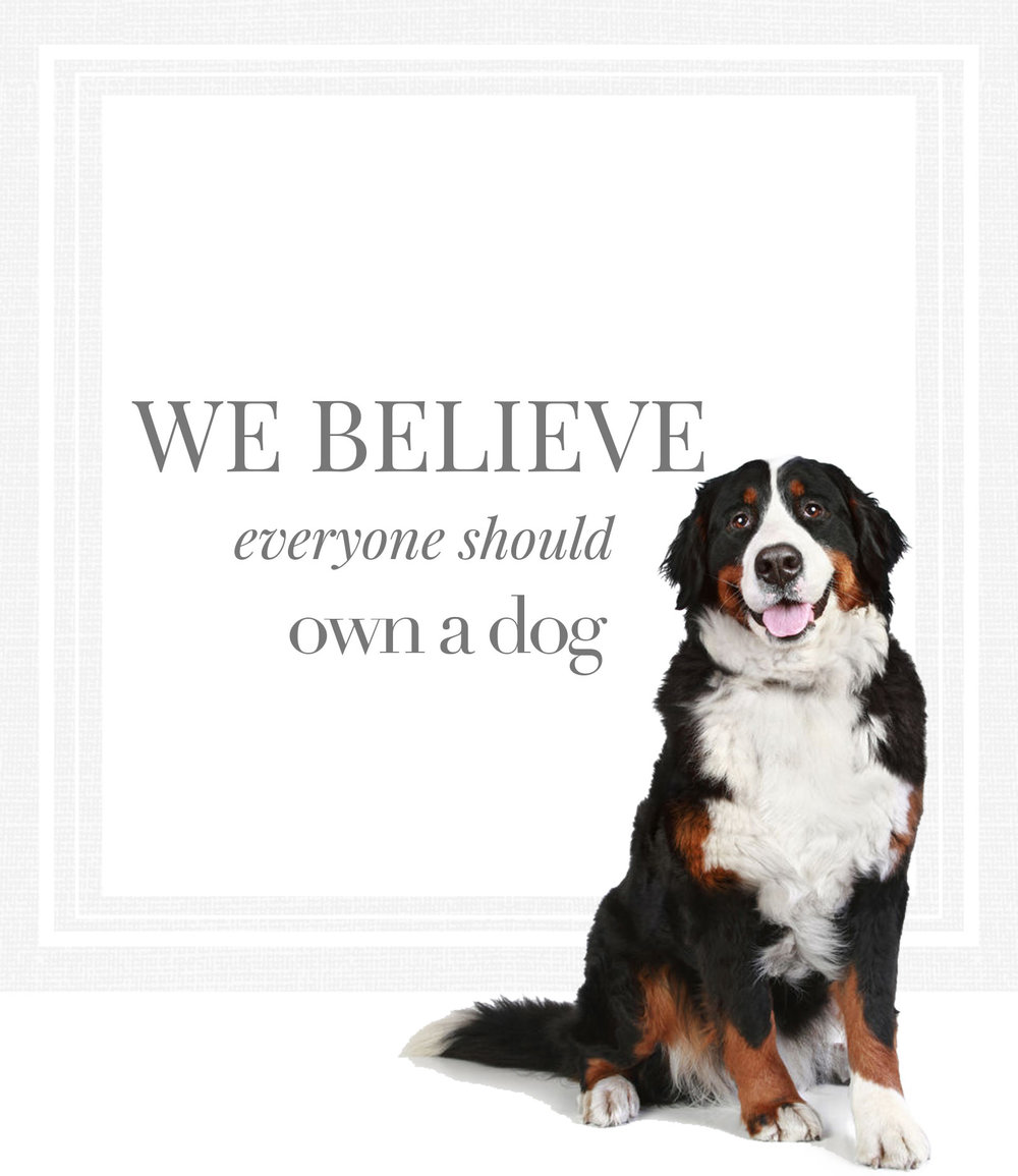 We believe everyone should own a dog.