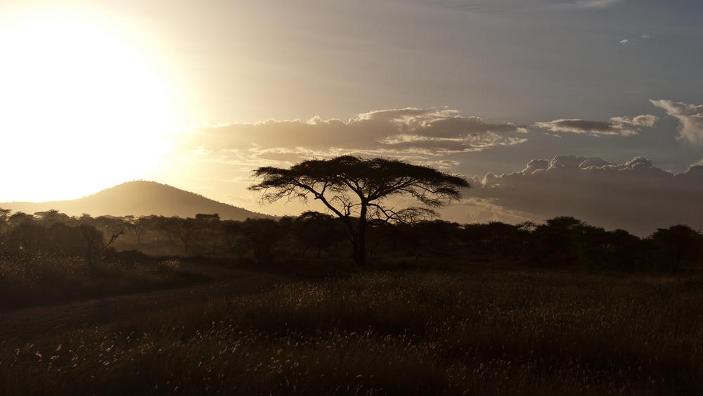 Tanzania-2077.jpg