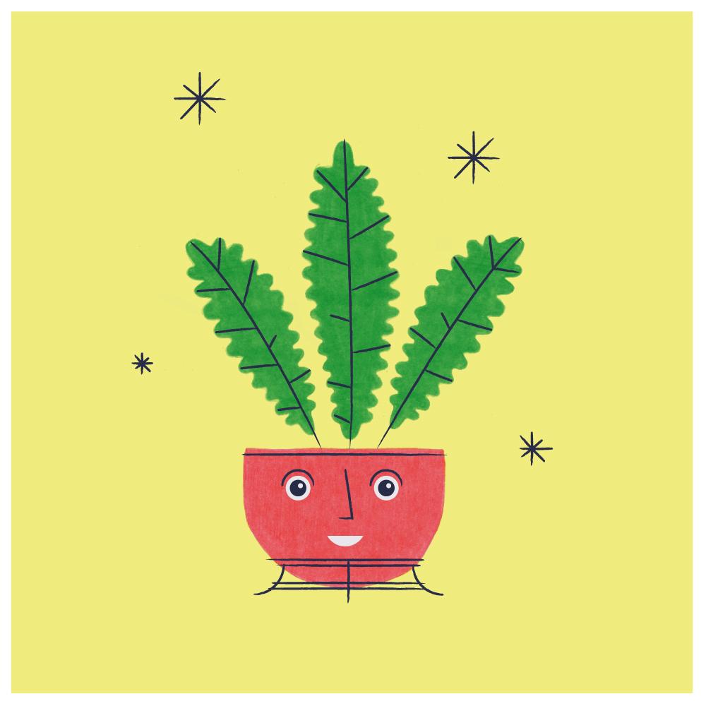 plant_TUMBLR.jpg
