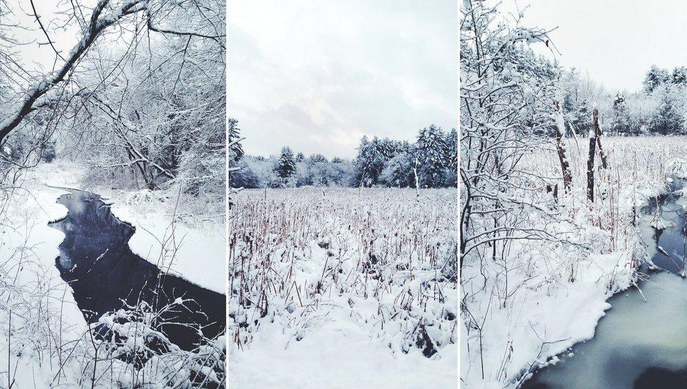 25-snow.jpg