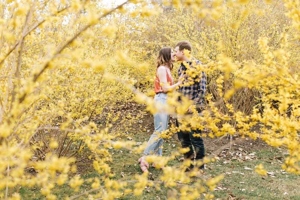 Arnold-Arboretum-Boston-Engagement-Lena-Mirisola-6.jpg