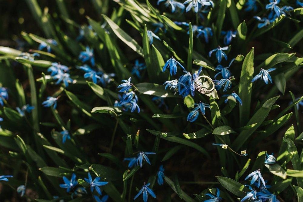 Arnold-Arboretum-Boston-Engagement-Lena-Mirisola-13.jpg
