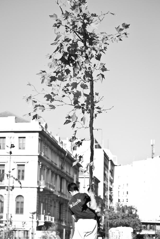 UrbanDig Project