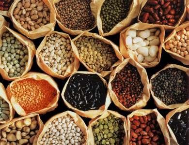 Dried bean varieties.