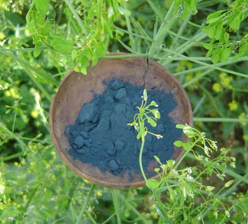 Woad (plant and powdered dyestuff).