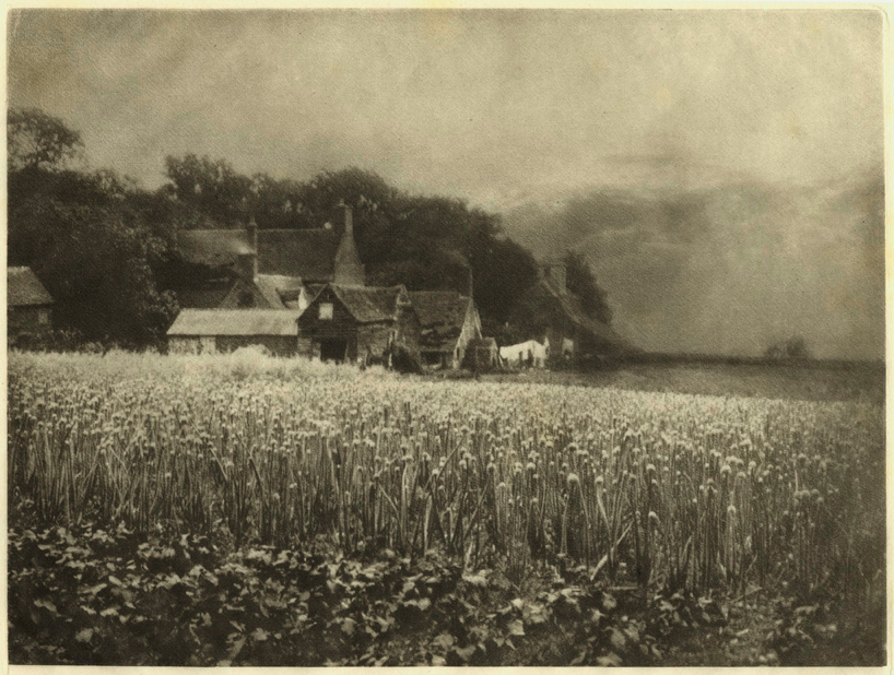 """The Onion Field"" 1889, by George Davison"