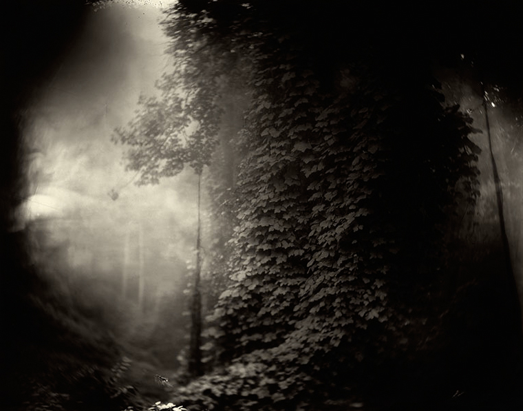 Sally Mann, In The Deep South, 1996, wet collodion process