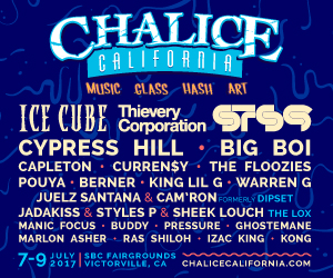 Chalice-lineup-300x250.jpg