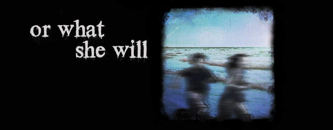 August 18, 2012.     Theatre I've Seen: or what she will, by Charly Evon Simpson      At Here Theater.      ________________________________________________