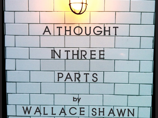 February 2, 2012.      Theatre I've Seen: A Thought in Three Parts by Wallace Shawn      At The Gene Frankel Theatre, Presented by Frank Theatre Company.        ______________________________________________