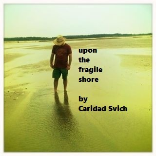 Fragile Shore.jpg