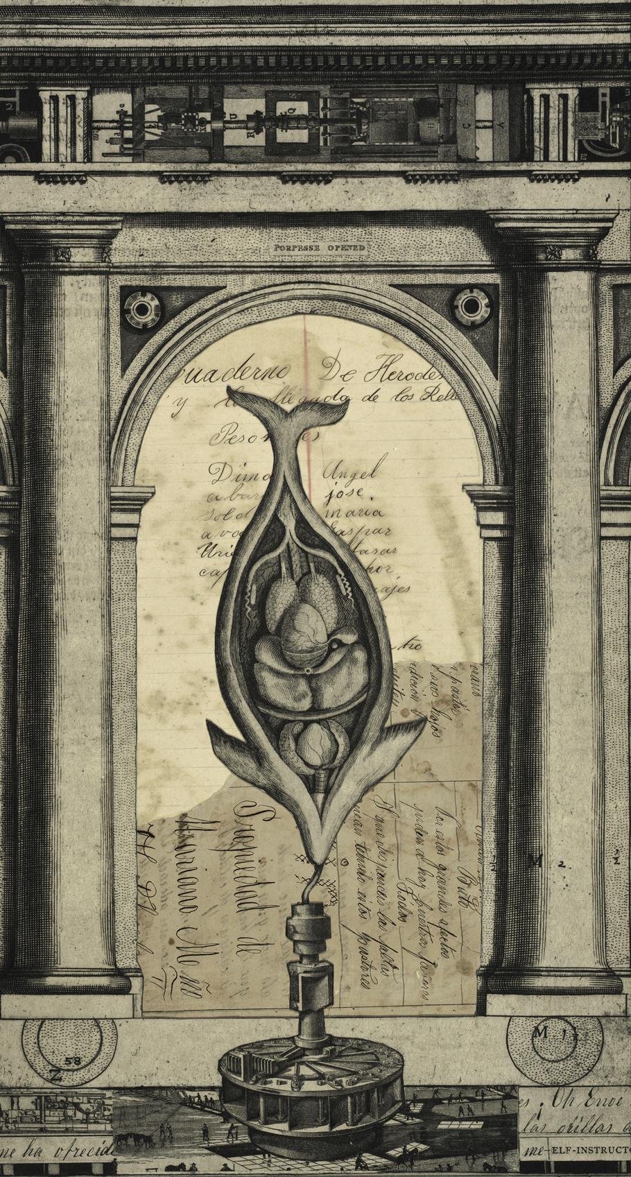 Open Porpoise, Variation II (Herod's Notebook)