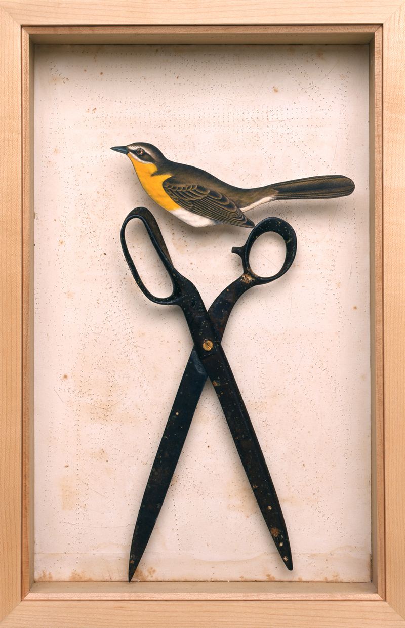 Scissors Bird  2007 mixed media box