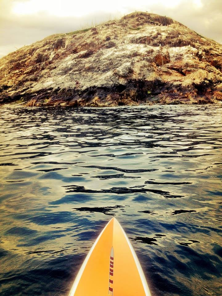 Egg Rock SIC paddle.jpg