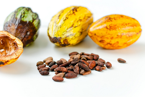 Photo Credit: Fresh Cacao from São Tomé & Príncipe by Everjean. License.