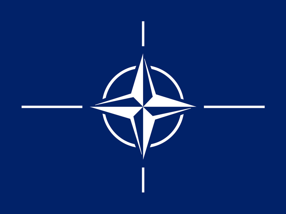 The Future of NATO - READ MORE