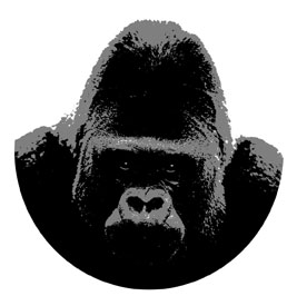 Gorilla Graphics signs,exhibition graphics