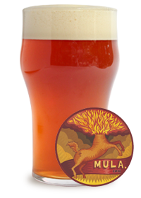 Mula IPA Cervejaria Nacional