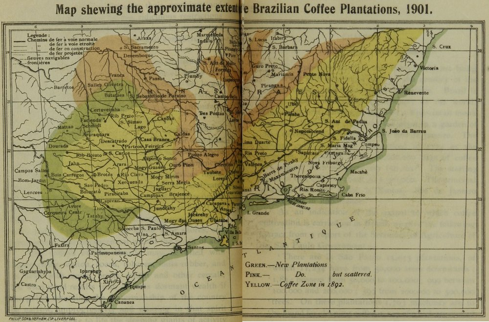 Brazilian coffee plantations 1901