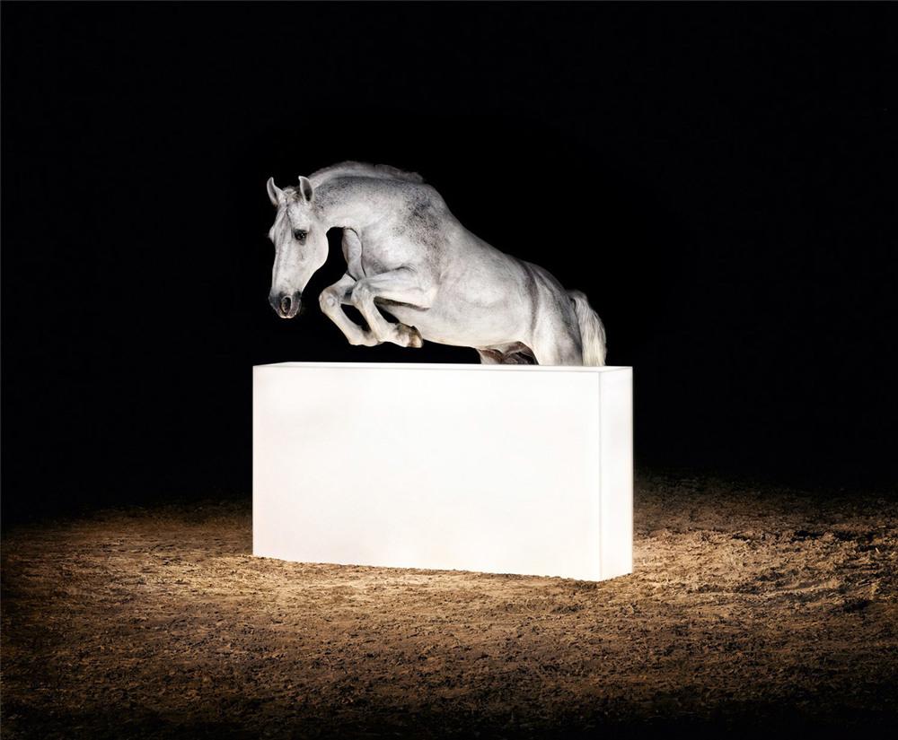 gian-paul-lozza-goodfromyou-horse.jpg