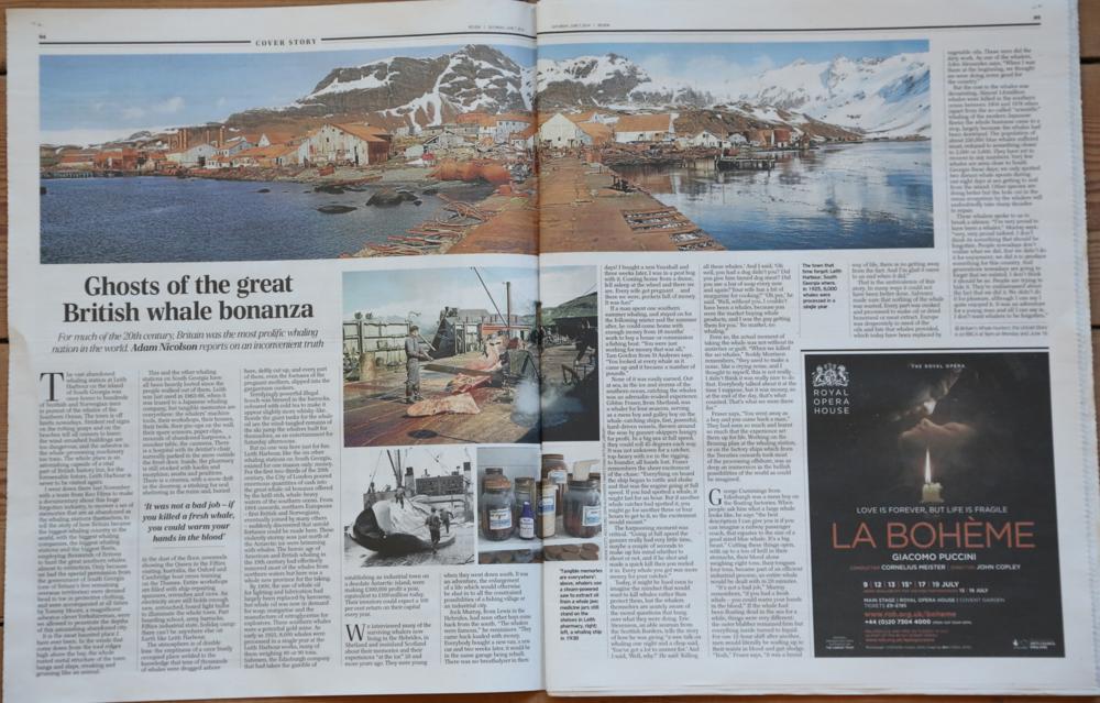 Telegraph_Article