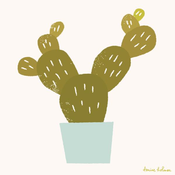 dh_cactus