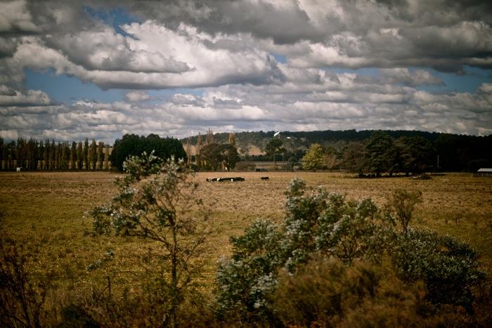 Armidale-Farm-Sydney-Australia-Zegna-2013-Dapper-Lou-Blog-Menswear+04.jpg